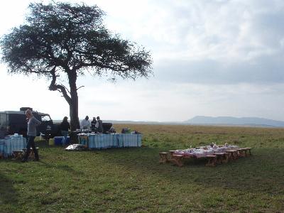 草原で朝食