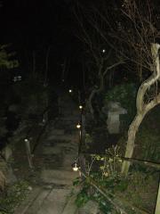 2007112804.jpg