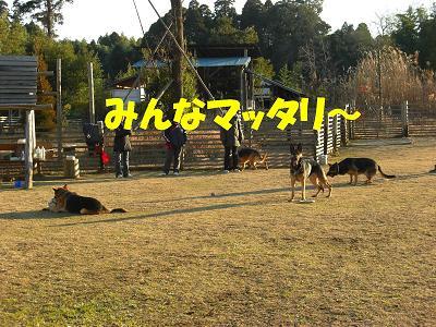 CIMG0143_sh01.jpg