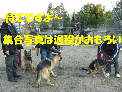 CIMG0146_sh01.jpg