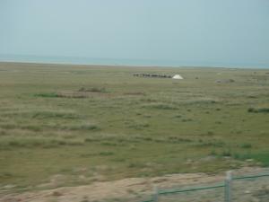 遠い青海湖