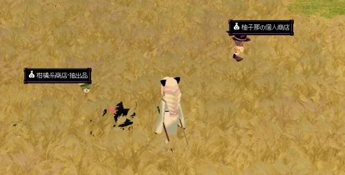 y-yuzu3.jpg