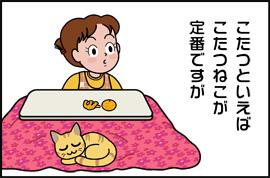 kotatuneko1_071114