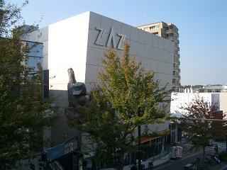 zaz2.jpg