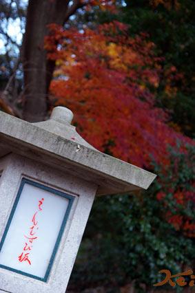 織姫神社08