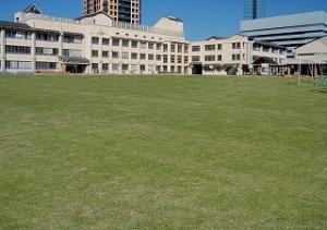 百道浜小学校 芝生の会