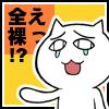 夏紗(かしゃ)