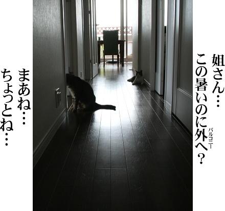 ブログ写真